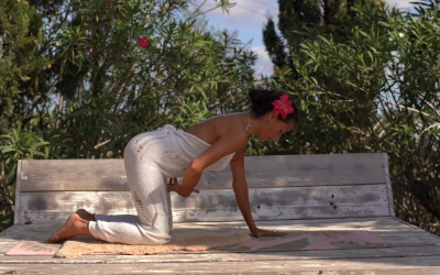 Yoga Video with LilaMaya